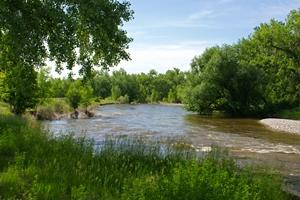 Spotlight image: State of the Poudre: A River Health Assessment and Report Card