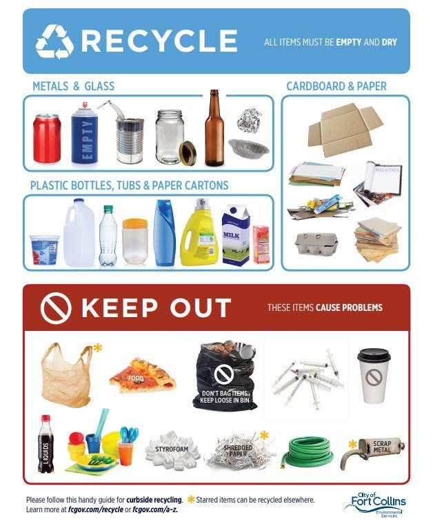 Spotlight image: Do you know what goes in the recycle bin?