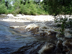 Spotlight image: Poudre River Running High from Spring Runoff