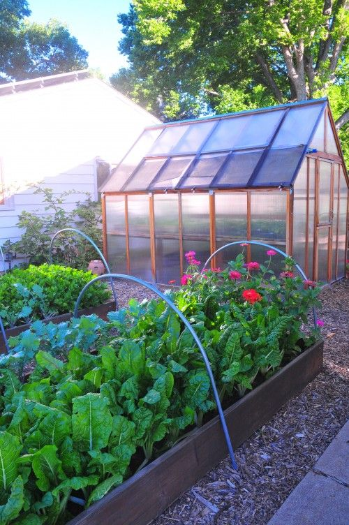 Sunspot Urban farm raised bed and Greenhouse