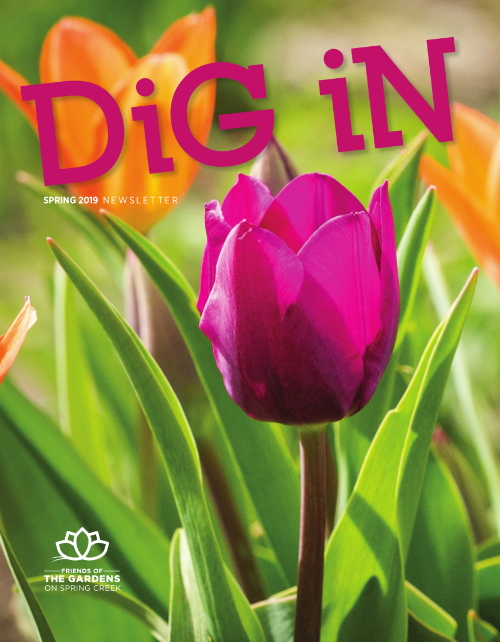 cover image for spring 2019