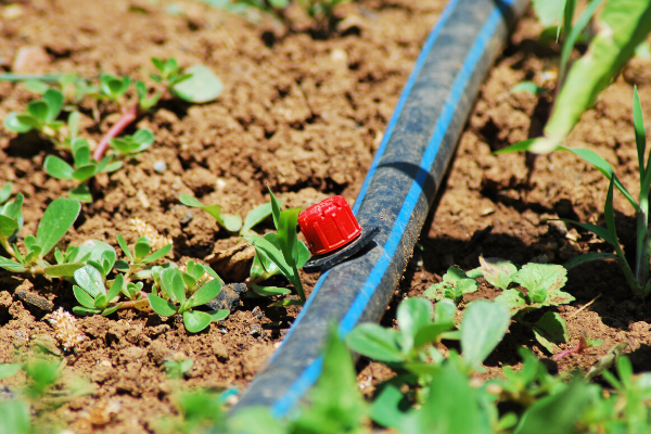 Converting Your Irrigation System
