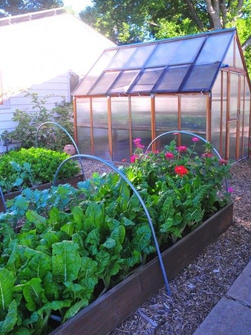 urban farm raised bed and greenhouse