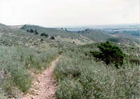 foothills-trail.jpg