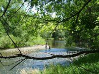 river-health-framework.jpg