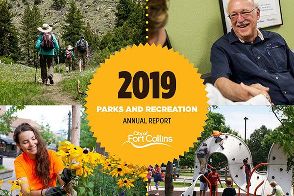 2019 P&R annual report image of cover