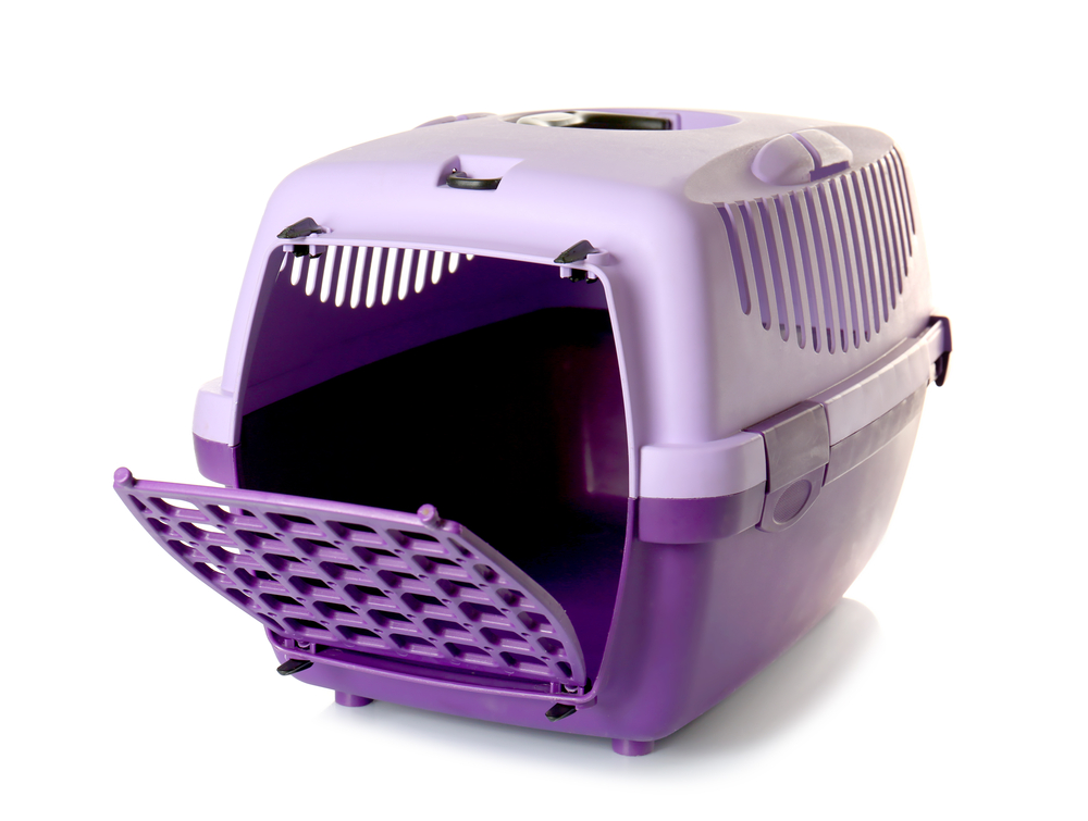 Plastic Pet Carrier