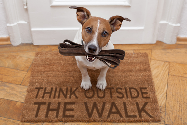 Think Outside the Walk