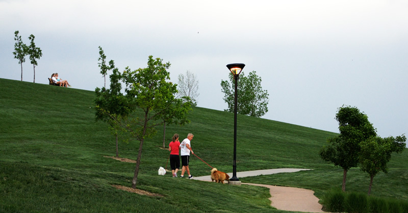 Couple walking their dog in a park